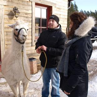 Lieliska saimniecība un mīlīgi Zoo dzīvnieki